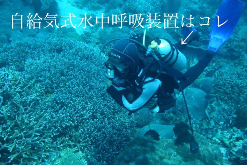 自給気式水中呼吸装置の説明画像